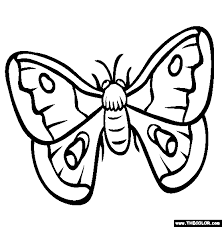 Insect Online Coloring Pages Page 1 The Color Page