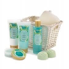 Bathroom Gift Baskets Spa Gift Basket Bath Set Cucumber Basil Beauty Kit Bubble Bath