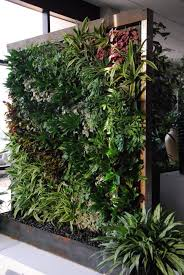 Urban Wall Garden - vertical gardens and green walls the trend in urban landscapes