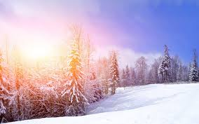 a winter day wallpapers and images wallpapers pictures photos