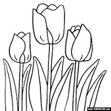 coloring pages flower daisy flower coloring