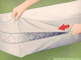 Home Remedies For Getting Rid Of Bed Bugs How To Get Rid Of Bed Bugs At Home With Pictures Wikihow
