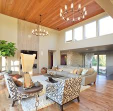 Best Shag Rugs Fluffy Rugs For Living Room Also Best 2017 Picture Decoregrupo