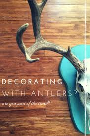 deer antlers decorating and a confession farm fresh vintage finds