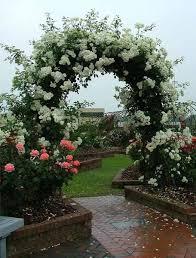 pictures pretty flower garden ideas best image libraries