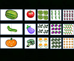 Raised Vegetable Garden Layout Raised Vegetable Garden Layout 4x8