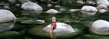 where is the daintree facts hotel accommodation plan your