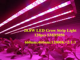 philips led grow light popular indoor hydroponic lights 28 8w smd 5050 rigid led strips