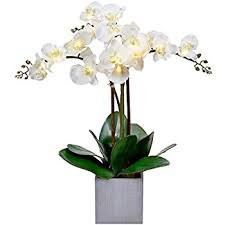 Artificial Orchids Amazon Com Nearly Natural 4804 Phalaenopsis Silk Flower