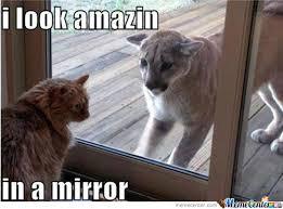 Mirror Meme - mirror by cocoline meme center
