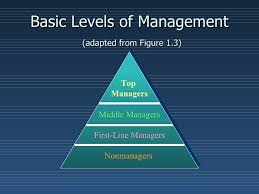 middle management examples management ppt