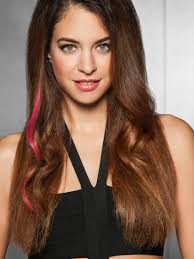 Color Hair Extension by Clip In Color Strips Human Hair Extensions By Put On Pieces