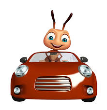 Learn How To Do Car Upholstery How To Get Rid Of Ants In Car In 5 Simple Steps Automotive Ward