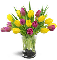 cool flower delivery kitchener waterloo room design plan photo in
