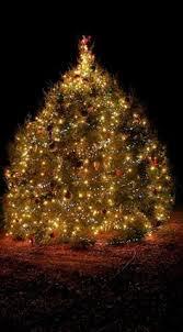 christmas tree lighting bridge street huntsville al bridge street huntsville alabama christmas tree it s all about