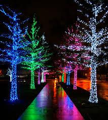 christmas light installation calgary christmas lights date night u2026martinis u0026 christmas lights