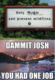Only You Can Prevent Forest Fires Meme - only josh can prevent wildfires funny pics memes captioned
