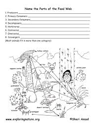 student activity sheet food web yahoo search results teaching