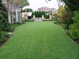 triyae com u003d fake grass yards various design inspiration for