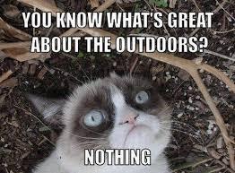 Grumpy Cat Snow Meme - grumpy cat xmas