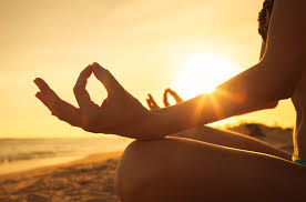 zen pals new orleans u0027 meditation community new orleans health