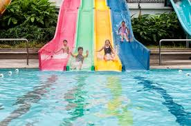 pictures of swimming pools swimming pools activesg