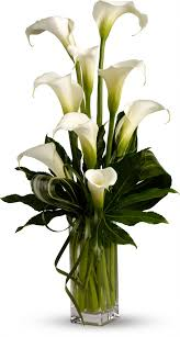 halloween floral centerpieces alcatraces color blanco alcatraces blancos pinterest fair