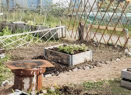 The Urban Garden The Urban Garden Project Part 1