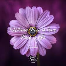 Flower And Love Quotes - 100 love quotes for him and for her spirit button