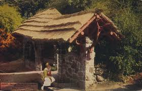 the daily postcard the colorado spring house