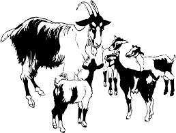 clipart goat and kids