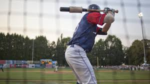 official website of portland pickles baseball home