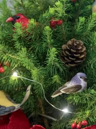 tabletop tree living spruce with birds gardeners