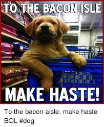 Dog Bacon Meme - to the bacon isle make haste to the bacon aisle make haste bol