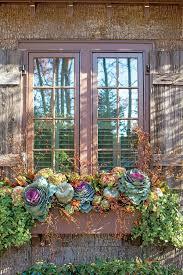 Flower Planter Ideas by Best 25 Fall Planters Ideas On Pinterest Outdoor Fall Flowers