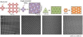 Dna Model Origami - surface assisted self assembly of dna origami nanostructures