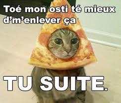 Meme Chat - chat pas content photos amusantes dédétraqué photos club