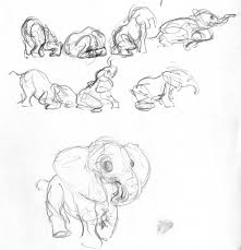 baby elephant sketches by liimlsan on deviantart