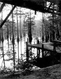 the florida memory blog