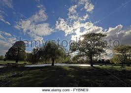 the sun breaks through clouds and rays of light beam onto a