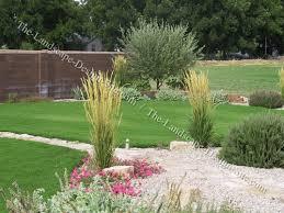 mediterranean front yard planting tips