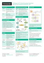 ap biology unit 5 animal physiology cheat sheet by hlewsey