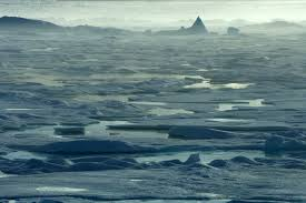 antarctica and the arctic compared differences and similarities