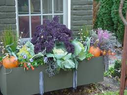 fall containers dirt simple