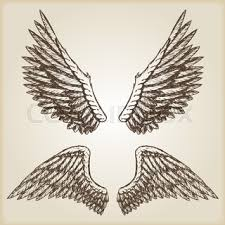 vector set of wings stock vector colourbox