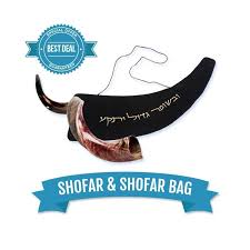 where to buy shofar shofars for sale
