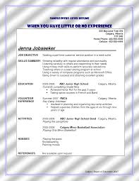 Entry Level Resume Sample No Work Experience beginner resume with no experience resume with no work experience