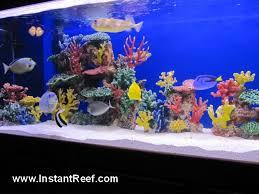 artificial coral reef fish aquarium photos