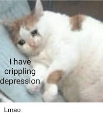 Depressed Cat Meme - i have crippling depression lmao lmao meme on me me