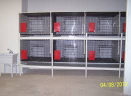 D Flooring Supplies D U0026 D Kennel Buildings And Kennel Supplies Veterinarian Cages
